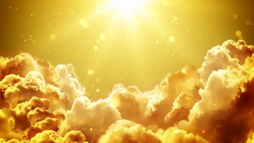 LV Website Sun Pic.webp