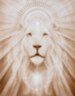 Lion Wix Site.jpg