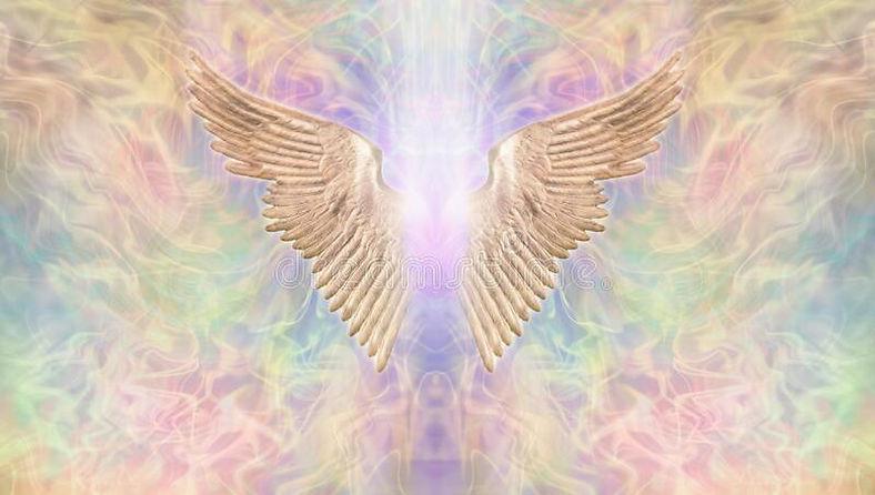 angel wings DL banner.jpg