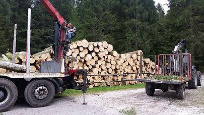 Autocarro con gru forestale e trattore forestale