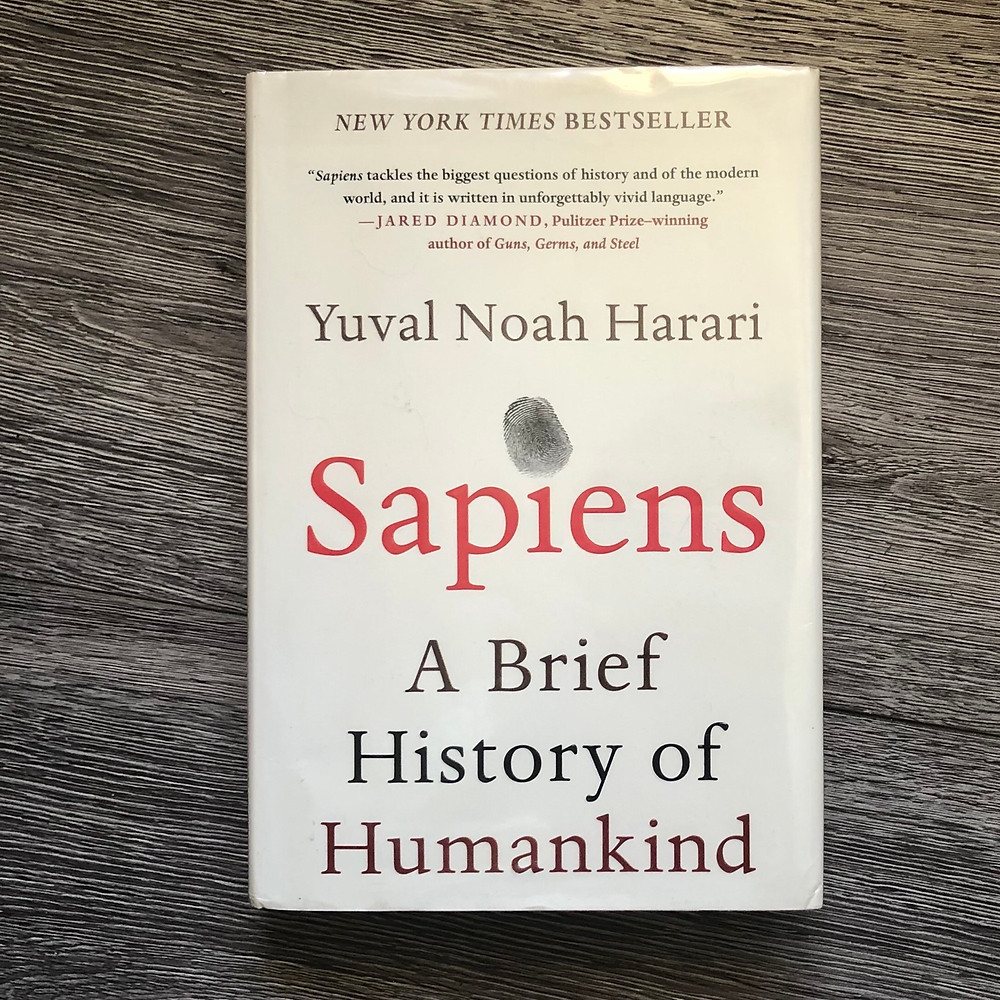 Sapiens by Yuval Noah Harari with gray wooden background