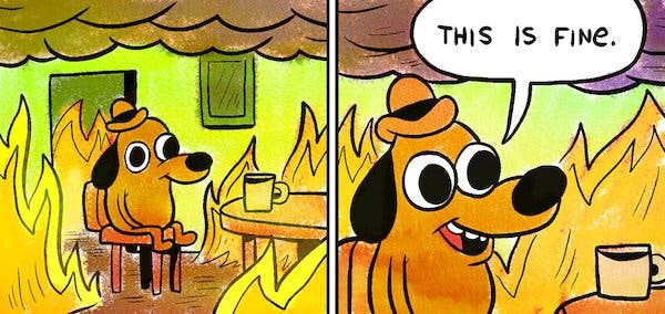 """Dog with hat sits in room on fire and says, """"This is fine."""""""