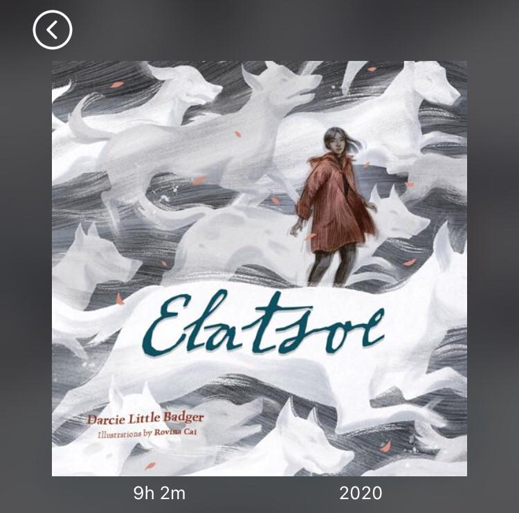 Screen shot of Elatsoe by Darcie Little Badger