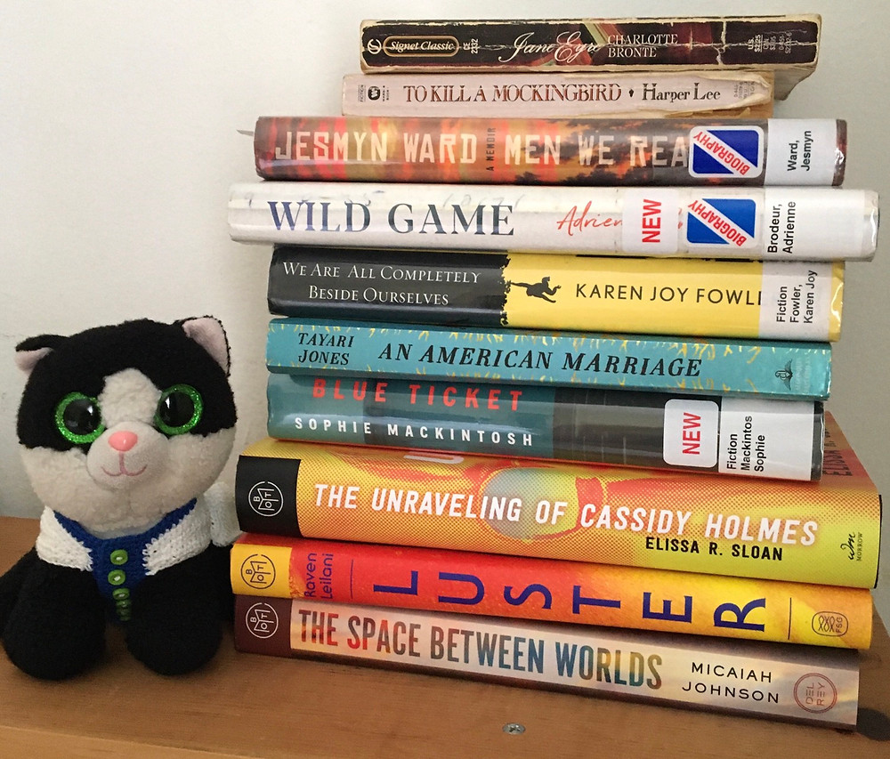Toy cat Ava with pile of books