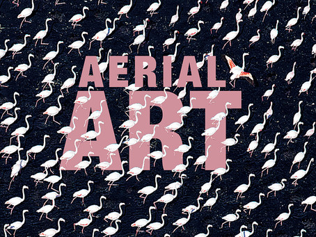AERIAL ART - The Book