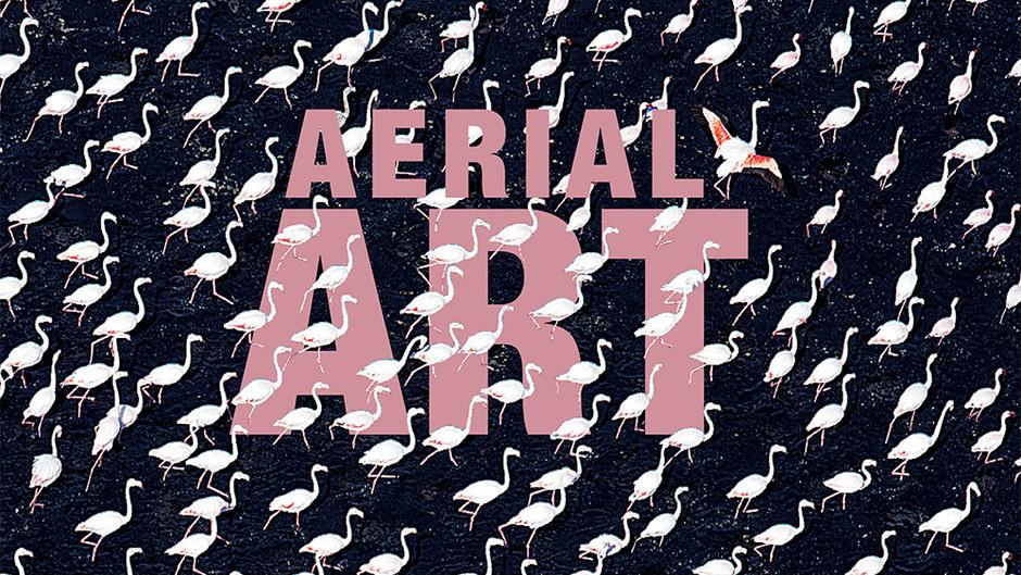 AERIAL ART - The Book