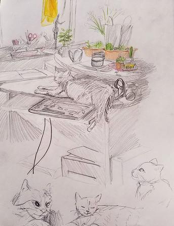 #Sketchbook (4).jpg