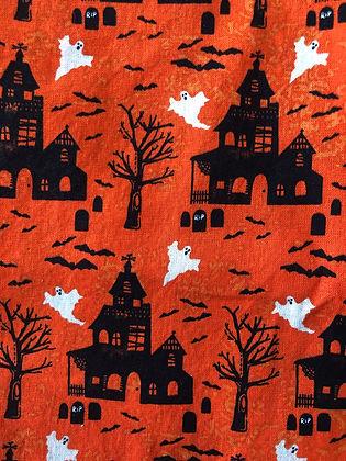 20B. Haunted House