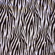 12D. Zebra