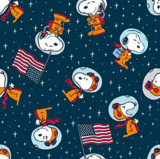 4C. Snoopy in Space