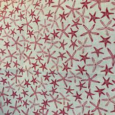 28B. Coral Stars