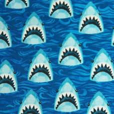 6D. Friendly Mr. Shark