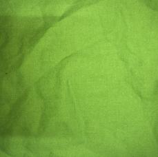 3A. Bright Green