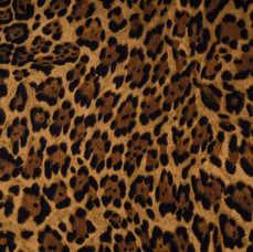 13D. Leopard Print