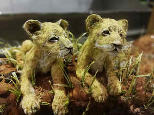 baby lion cakes