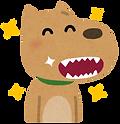 キレイな犬の歯.png