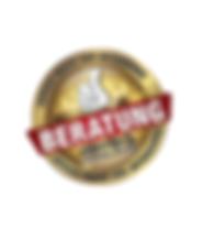Fertig logo Beratung.png