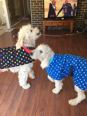 eadie and river in coats.jpg