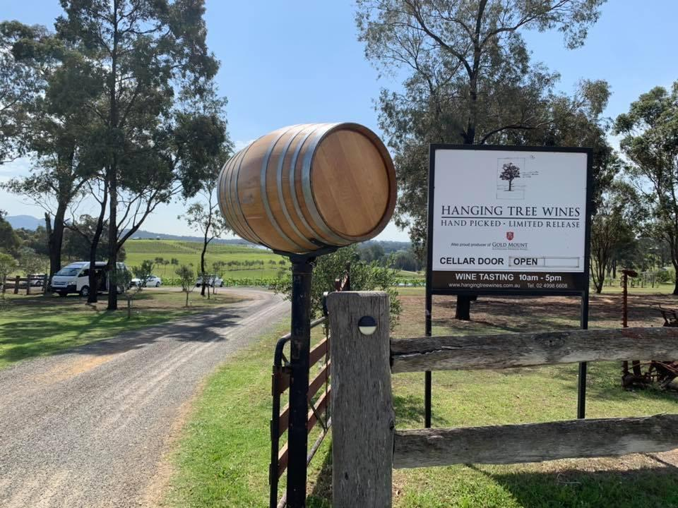 vineyards hanging tree wines