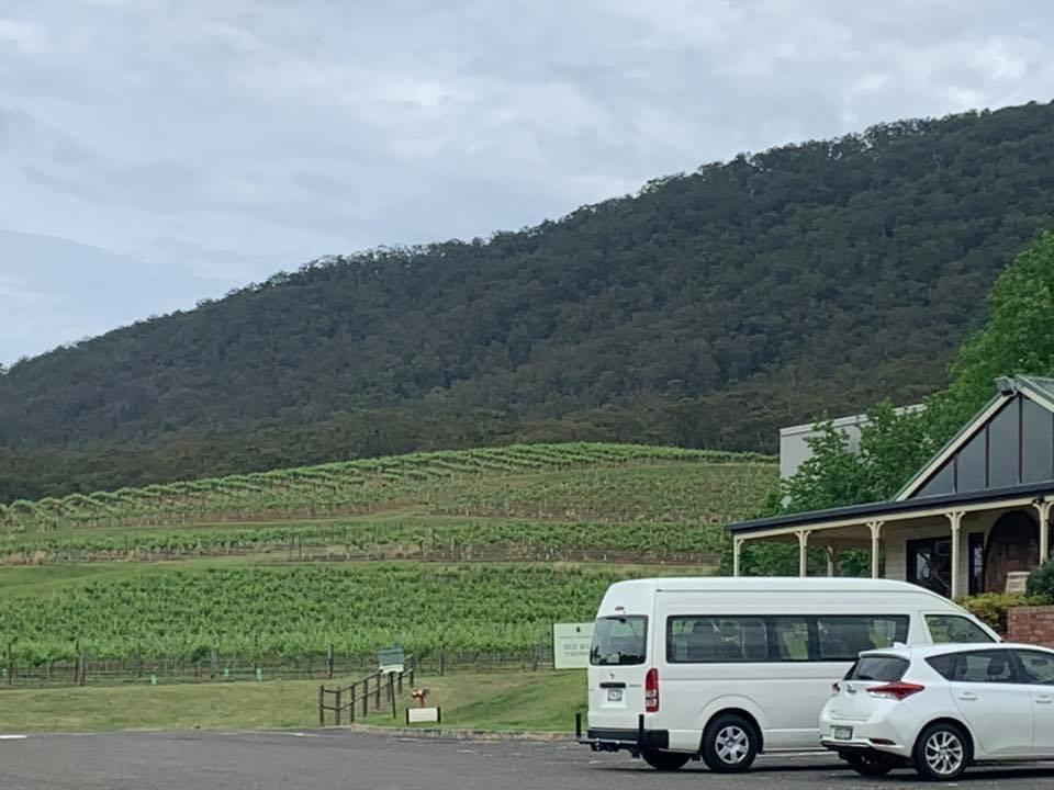 vineyards Mount Pleasant Wines