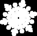 Schneeflocke 1.png