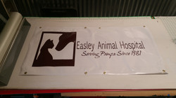 Easly's