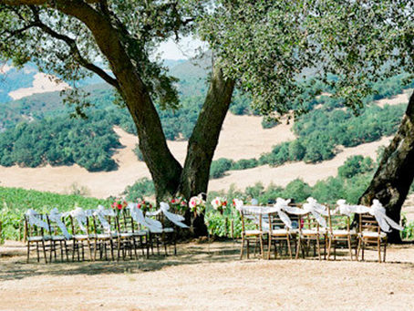 Wedding Rules To Follow (No, really)