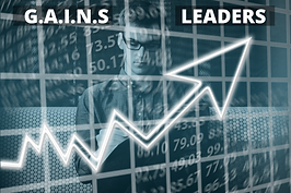 G.A.I.N.S LEADERS COURSE.png