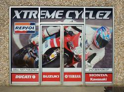 Xtreme Cyclez Vision Vinyl.JPG