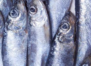 Want your newborn to be intelligent? Eating fish during pregnancy might help.