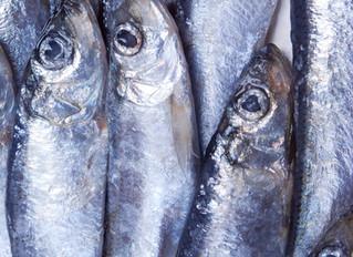 Norsif formidler: Addressing ESG risks in food and fisheries