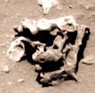 sm38-junkyardartefact-dblpic-bw-1200px_e
