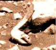 sm37-2-debrisfield-obj1eel-comp-col-900p