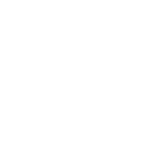 Снежинка2.png