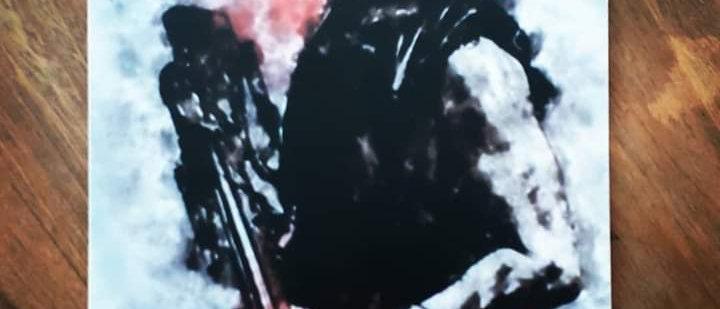 Placa Daryl Dixon 1