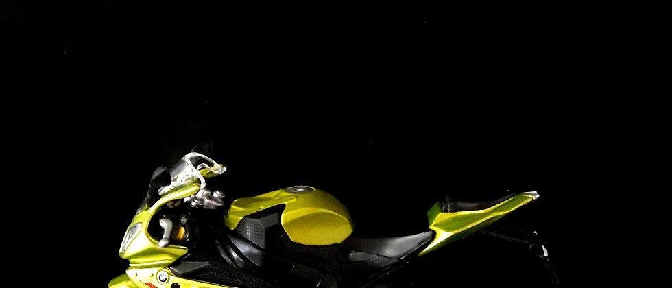 Miniatura de moto BMW 1000rr