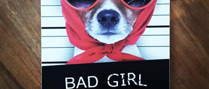 Placa Bad Girl