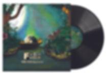 Record image.jpg