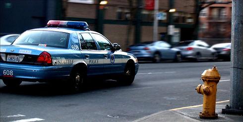 Seattle_Police_by_mrkoww.jpg