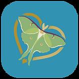 Serenity-Yoga-Studio-App.png