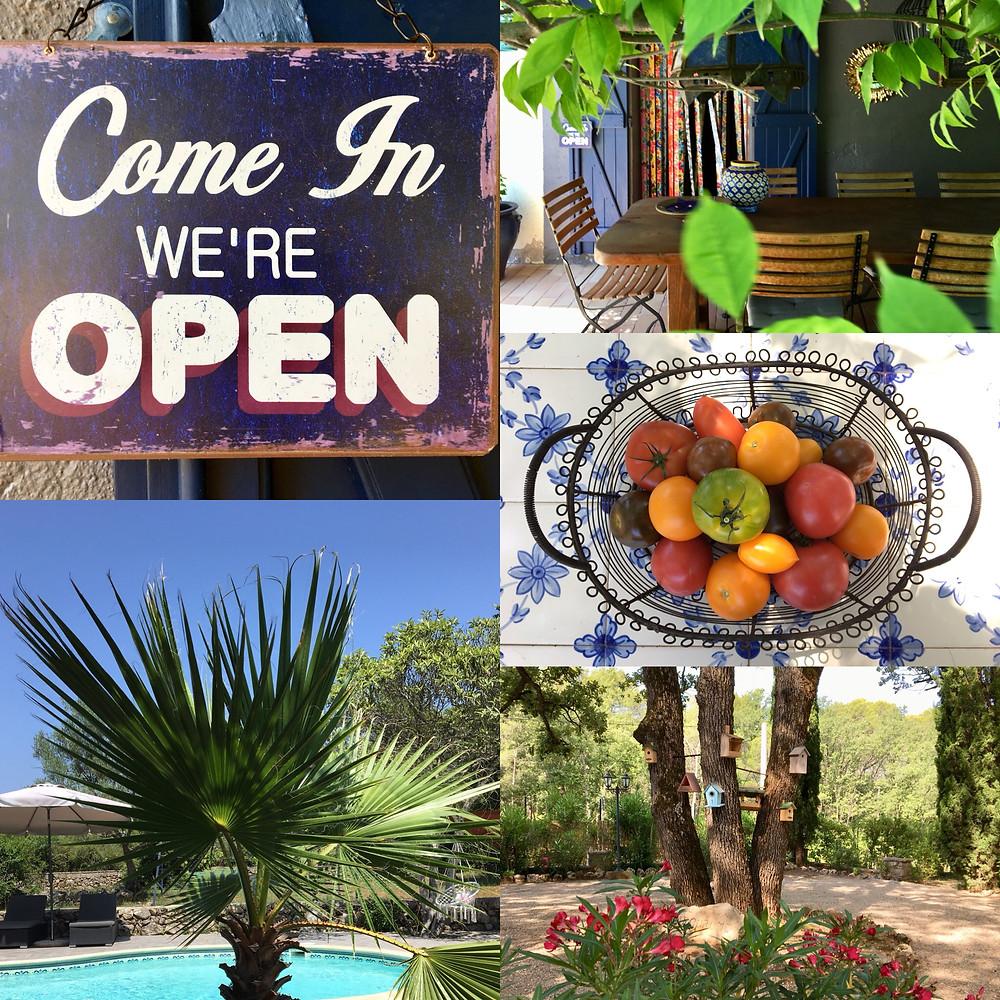 bedandbreakfast, Bastide, garden, terrace, palmtree