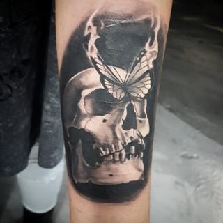 Butterfly Skull - David Baran