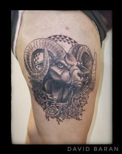 Ram and Geometry Tattoo by David Baran