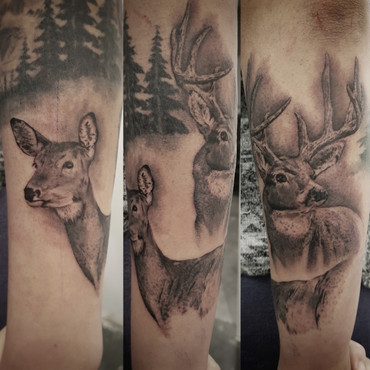 Realistic Deer Tattoo by Larissa Long