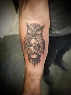 Owl and Skull Tattoo by David Baran
