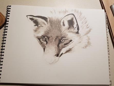 Realistic fox by Larissa Long