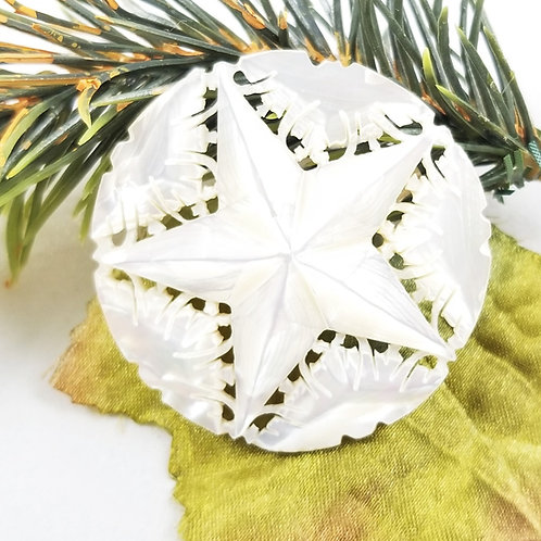 Hand Crafted Mother of Pearl Star Brooch