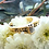 Thumbnail: 14k Retro Style Diamond Ring
