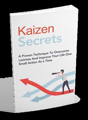 Kaizen Secrets