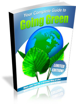 Going Green Minisite WP Ebook Template